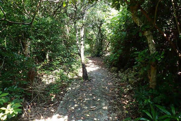 シギラ周辺の遊歩道