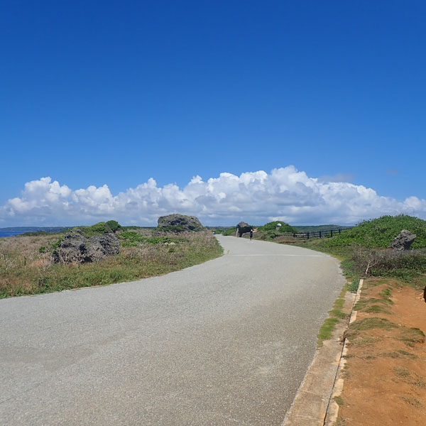 東平安名崎の道路